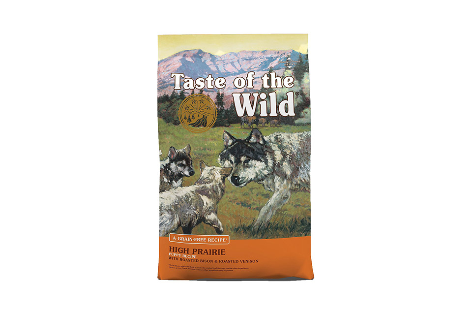 best-jack russell puppy dog food