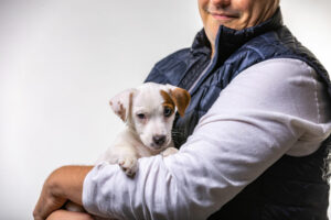 Are Jack Russells Affectionate?
